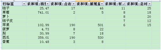 wps数据透视表怎么用?第13张